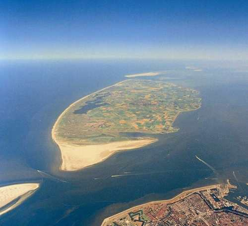 texel from above